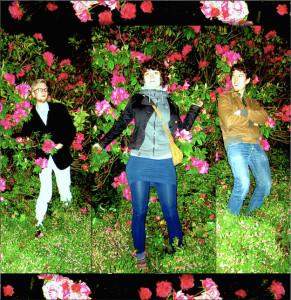 Trio Rosengarth